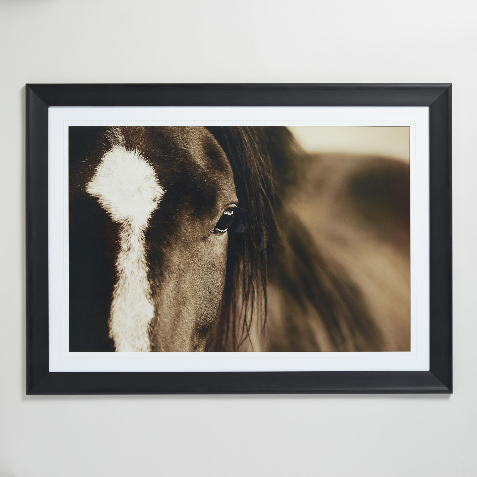 Dark Horse Eyes by Lisa Dearing with Frame: Black/Brown/White/Natural - Large by World Market